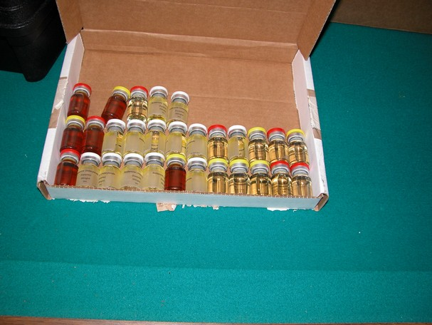 Florida Steroid Bust
